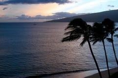 Strandsonnenuntergang mit Palmen silhoettes Stockfoto