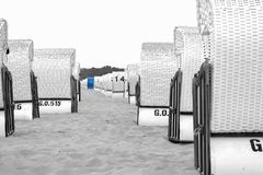 Strandstühle an der Ostsee, an vielen weißen und an einem blau, horizontal in der schwarzen weißen farbigen Ausgabe lizenzfreies stockbild