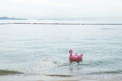 Strandstång med tropiska frukter Det bästa ögonblicket på Pattaya, Thailand royaltyfria foton