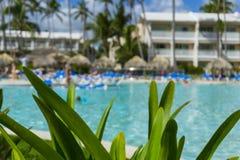 Strandstühle im Swimmingpool im tropischen Hotel nehmen Zuflucht Entspannende Zeit im Pool Lizenzfreie Stockbilder