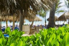 Strandstühle im Swimmingpool im tropischen Hotel nehmen Zuflucht Entspannende Zeit im Pool Lizenzfreies Stockfoto