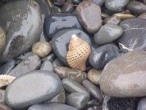 Strandsteine und Seeoberteil lizenzfreie stockfotografie