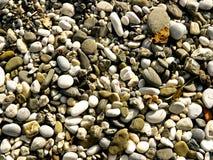 strandsten Fotografering för Bildbyråer