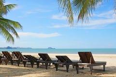 Strandstolar och kokosnötpalmträd på den tropiska stranden Fotografering för Bildbyråer