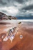 strandstorm Arkivbilder