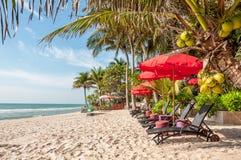 Strandstuhl unter Regenschirm mit Kokosnussbäumen als Hintergrund stockfotografie