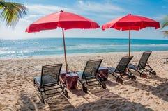 Strandstuhl unter Regenschirm mit Kokosnussbäumen als Hintergrund lizenzfreies stockfoto