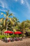 Strandstuhl unter Regenschirm mit Kokosnussbäumen als Hintergrund lizenzfreie stockbilder