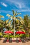 Strandstuhl unter Regenschirm mit Kokosnussbäumen als Hintergrund lizenzfreie stockfotografie
