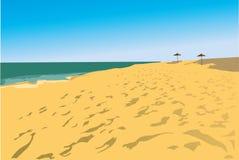 strandsvampar två Vektor Illustrationer