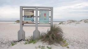 Strandteken met Dier en Vogels dichtbij het Pensacola-Strand, Florida stock footage