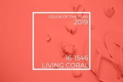 Strandtillbehör på den vita bakgrunden Bo koralltemat - färg av året 2019 royaltyfri fotografi