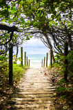 Strandtillträdesmooloolaba Fotografering för Bildbyråer