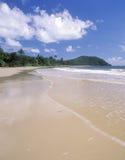 stranduddqueensland bedrövelse Arkivfoton