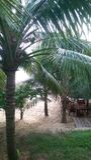 Strandurlaubsortbar Phu Quoc Lizenzfreie Stockbilder