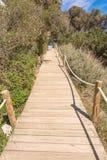 Strandväg till den Saona stranden i Formentera Arkivfoto