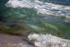 Strandvågor Royaltyfria Foton