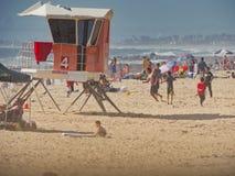 Strandvakt Fotografering för Bildbyråer