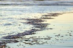 strandvatten royaltyfria bilder