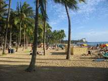 strandwaikiki Royaltyfri Foto