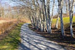 Strandwanderweg Fort Langley Derby stockfoto