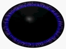 Strange alien eye. Animal eye with purple colored iris, detail view into eye bulb. Movement of pupil. Very high resolution royalty free illustration