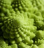 Strange Cauliflower. A fractal pattern found in a peculiar variety of cauliflower (Broccoli Romanesco Stock Images