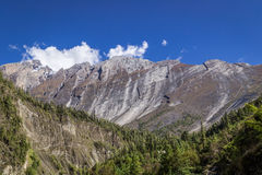 Strange curved mountain and valley full of pines. View from the  Annapurnas circuit, Himalaya, Nepal Stock Images