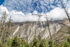 Strange curved mountain and valley full of pines. Valley with pines and voew of the mountain with clouds, Annapurnas, Himalaya, Nepal Stock Photos