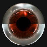 Strange Eye Ball Stock Photos
