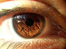 Strange eye look carefully. Have beautiful things in the body, however, we do not know Royalty Free Stock Images