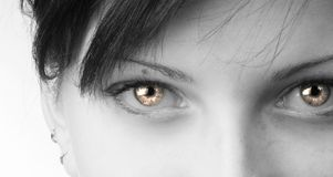 Strange eyes. Black and white close up of fair eyes Royalty Free Stock Image