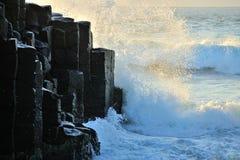 Strange granite rocks at Fingal Heads Royalty Free Stock Photo