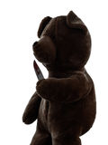 Strange killer teddy bear holding bloody knife  silhouette Stock Photo