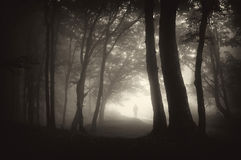 Strange man person walking in a dark forest Royalty Free Stock Photos