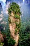 View of grand canyon. The strange mountain scenery of Zhangjiajie stock image