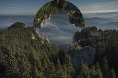 Strange orb above fir tree forest Stock Photos
