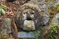 Strange ornemental face Stock Images
