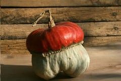 Strange pumpkin Stock Photos