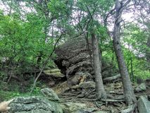 Rock in forest stock photography