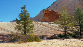 Strange Rock Formation and Checkerboard Mesa royalty free stock images