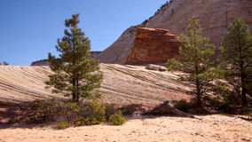 Strange Rock Formation and Checkerboard Mesa stock photography