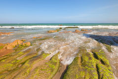Strange rocks and moss at Co Thach beach Stock Photos