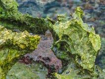 Strange rocks Royalty Free Stock Images