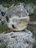 Strange stone Royalty Free Stock Image