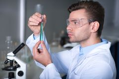 Young handsome explorer keeping and overlooking test tube. Strange substance. Young unshaken handsome practitioner working in the laboratory sitting and observe Royalty Free Stock Image