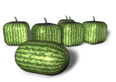 Strange Watermelons Royalty Free Stock Photos