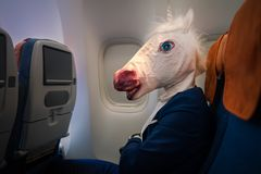 Strange young man in funny mask travels by plane. Unusual passenger in elegant suit sits alone inside the aircraft and ready to flight away. Stylish traveler Stock Photos