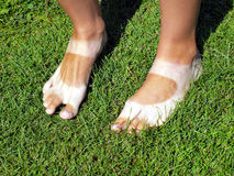 Strangely tanned legs on the lawn Stock Images