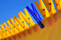 Stranger. Pattern of clothespins holding yellow cloth being dried Royalty Free Stock Photo